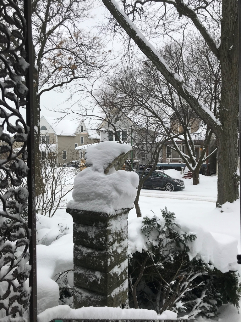 A gargoyle on a pillar, almost indistinguishable due to the snow. Trees line the street before it.